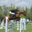 Show jumping — Stock Photo #1317667