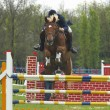 Show jumping — Stock Photo #1317950