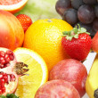 Fruit — Stock Photo #1318430
