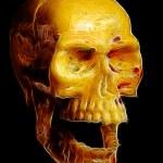 Human skull isolated on black — Stock Photo