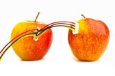 Two fresh apples connected by wires. — Stock Photo