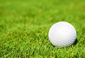 Ball for a golf — Stock Photo
