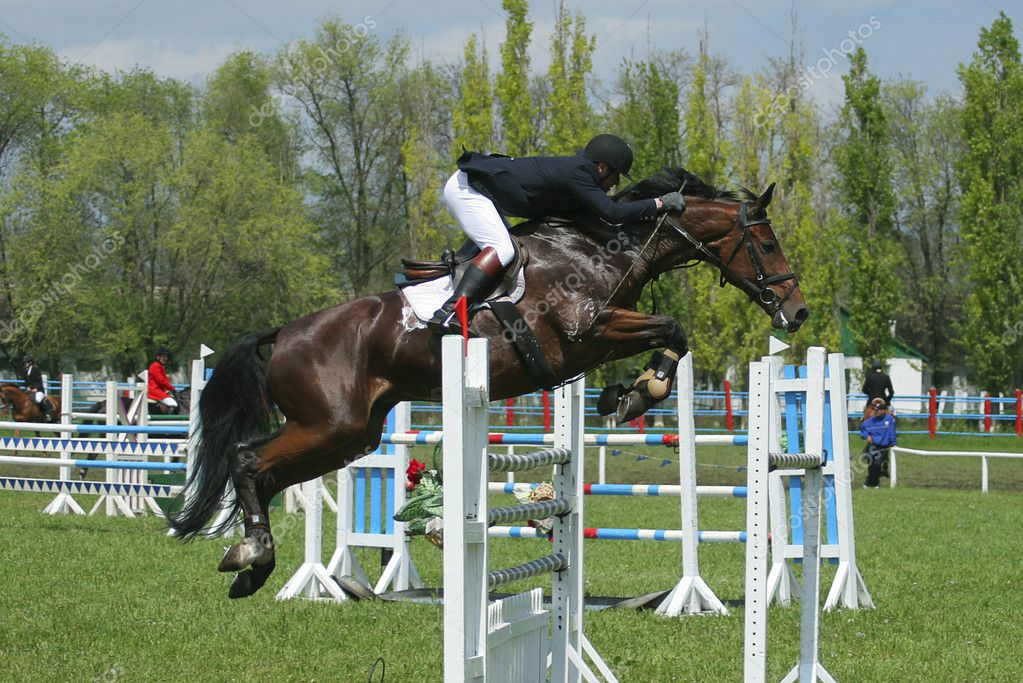 Show jumping — Stock Photo #1317657