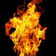 Fire photo on a black background - Foto Stock