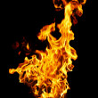 Fire photo on a black background - Stock Photo