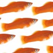 Royalty-Free Stock Photo: Flight of gold small fishes on a white b
