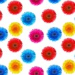 Flowers gerbers seamless background — Stock Photo