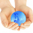 The hand of the person holds globe on a — Stock Photo #1324236