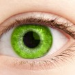 Green eye of the person close up — Stock Photo