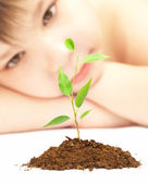 Boy looks at a young plant — Stock Photo