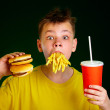Child and fast food. — Stock Photo #1331368