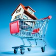 Stock Photo: Shopping cart and house