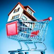 Shopping cart and house - Stock Photo
