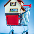 Shopping cart and house — Stock fotografie