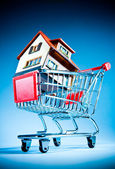 Shopping cart and house — Foto Stock