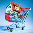 Shopping cart and house — Foto de Stock