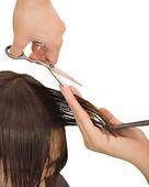 Giovane donna di parrucchiere taglio — Foto Stock