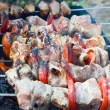 Roasting kebab — Stock Photo #1149382