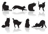 Cat pose — Stock Vector