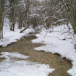 Winter stream — Stock Photo