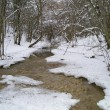 Winter stream — Stockfoto #1443210