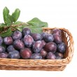 Juicy plums in the basket. — Stock Photo