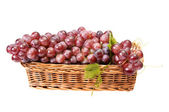 Wooden basket and ripe grapes on a white — Stock Photo