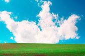 Velmi krásné jarní krajina. — Stock fotografie