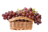 Beautiful wooden basket and ripe grapes — Stock Photo