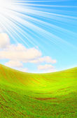 Beams of sun covered green field. — Stock Photo