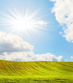 Splendid sun beams and green field in sp — Stock Photo