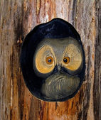 Wooden owl. — Stock Photo
