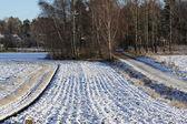 Ilk kar. — Stok fotoğraf