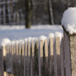 Winter fence. - Stock Photo
