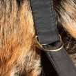 Fragment of a fur coat — Stock Photo