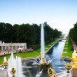 Peterhof - Photo