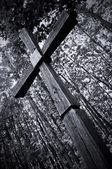 Cross — Stock Photo