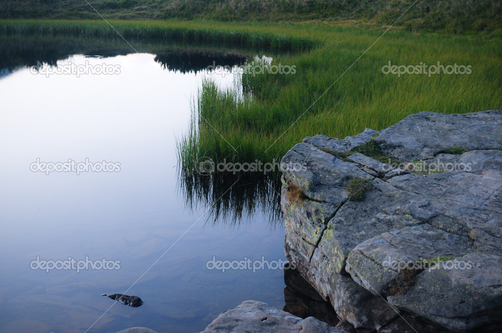 Stone are in water — Stock Photo #1242504