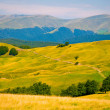 Ukraine Carpathian Mountain — Photo