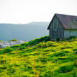 Old hut — Stock Photo