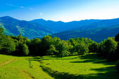 Carpathians in summertime of year — Stock Photo