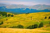 Ukraine Carpathian Mountain — Stock Photo