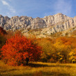 Stock Photo: Autumn in the Mountains