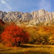 Autumn in the Mountains — Stock Photo #1454554