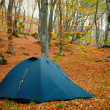 Stock Photo: Tent in the autumn forest