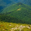 Alpine slope — Stockfoto