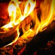 Wood fire — Stock Photo #2233541