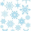 Collection of the snowflakes — Stock Vector