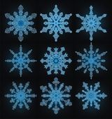 Collection of the snowflakes — Stockvektor