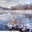 Winter river — Stock Photo
